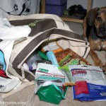 Great Finds: BlogPaws 2013 Continued PLUS Giveaway!