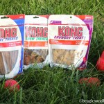 Product Review: KONG Premium Treats PLUS Giveaway!