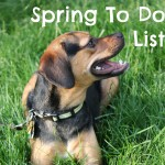 Spring to do list.