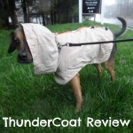 ThunderCoat Review