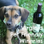 V is for Virginia is for Pet and Wine Lovers #atozchallenge