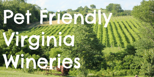 Pet Friendly Virginia Wineries