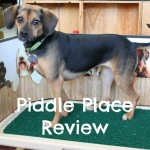 Piddle Place Review