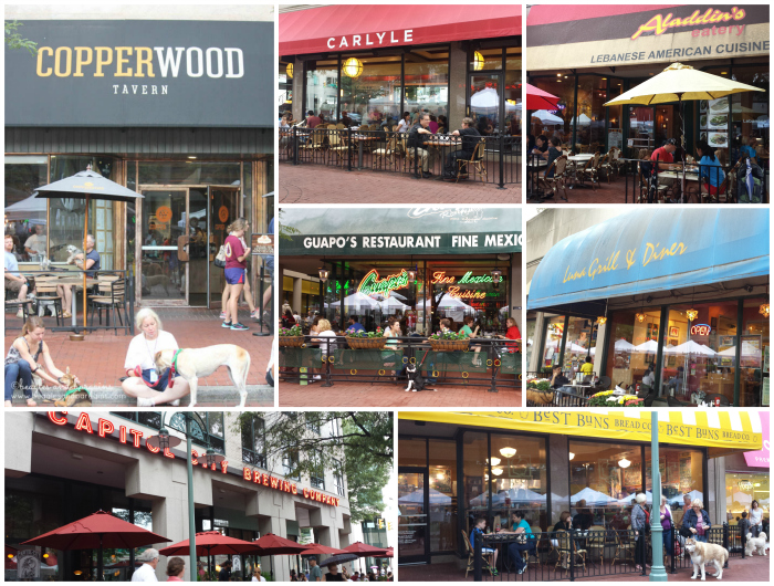 Pet friendly restaurants in the Village at Shirlington.
