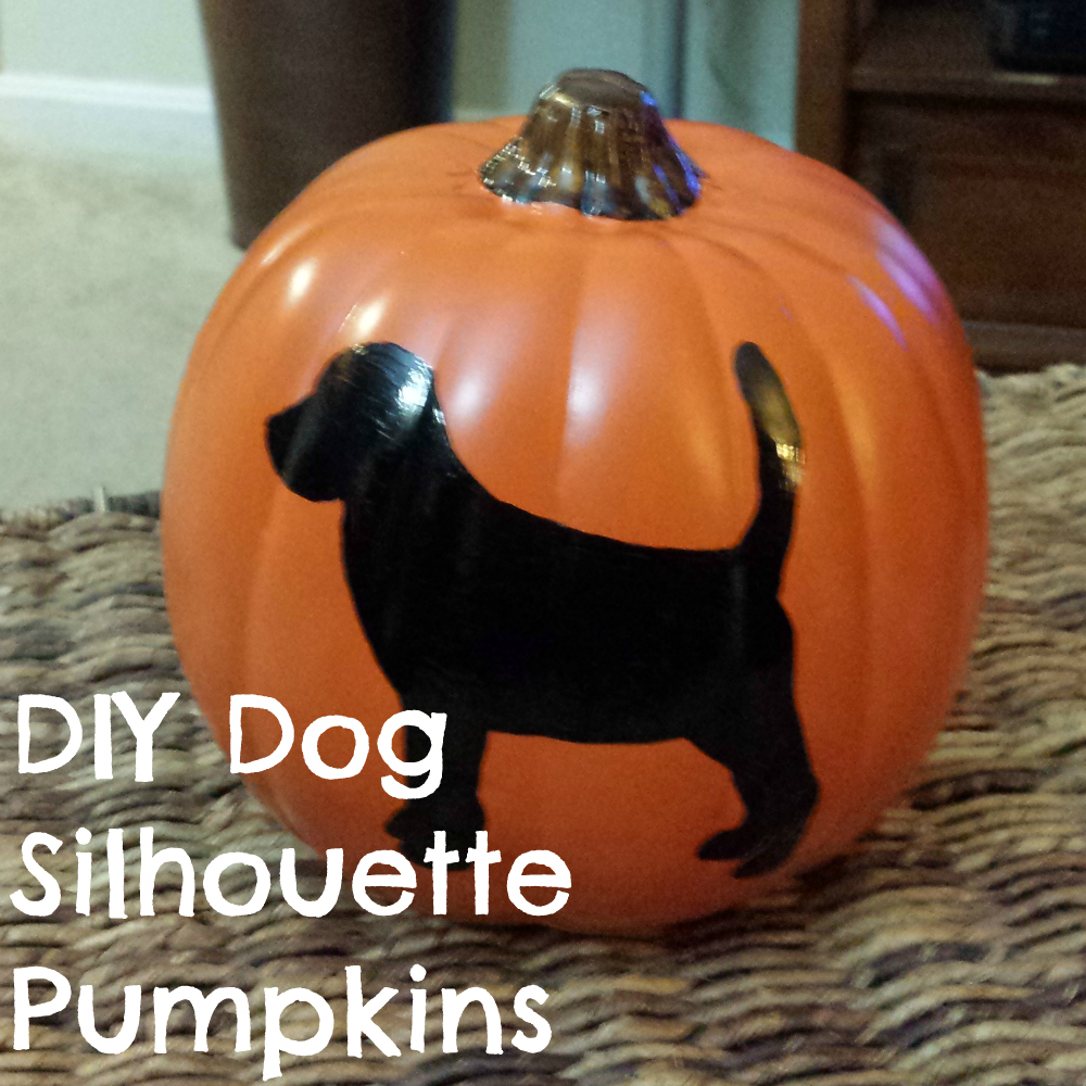 DIY Dog Silhouette Pumpkins