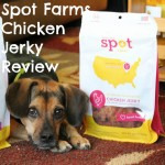 Spot Farms Chicken Jerky Review