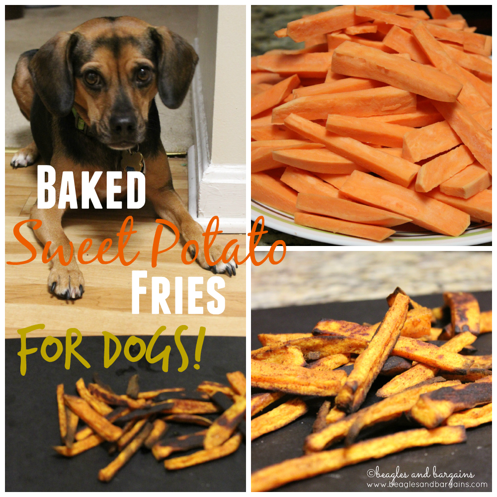 sweet potato fries for dogs