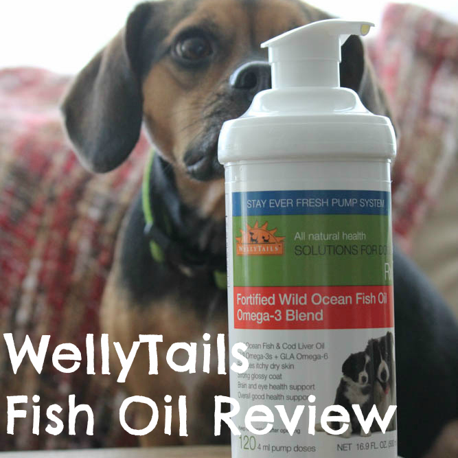 Wellytails fish oil helps dog 39 s my skin and coat for Does fish oil help skin