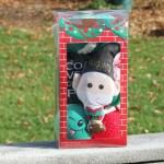 Petco Holiday Time For Joy Assorted Dog Toys Gift Set