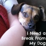 I Need a Break From My Dog