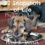 52 Snapshots of Life - Photo Challenge - Week 8: MIRROR