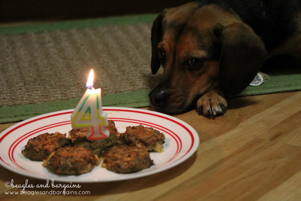 Celebrating Luna's Fourth Birthday with WellyChef Birthday Burgers