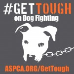 #GetTough on Dog Fighting