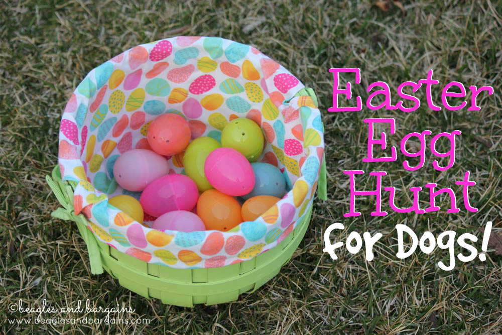 Easy Easter Egg Hunt for Dogs