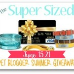 Summer is here and so is The Super Sized Pet Blogger Summer Giveaway!