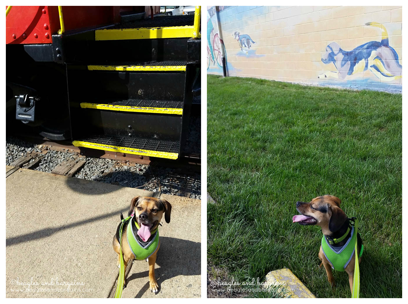 Saw some sights in Vienna, Virginia including a mural and train caboose!