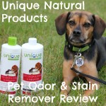 Clean Apartment Living with Pets and Unique Natural Products