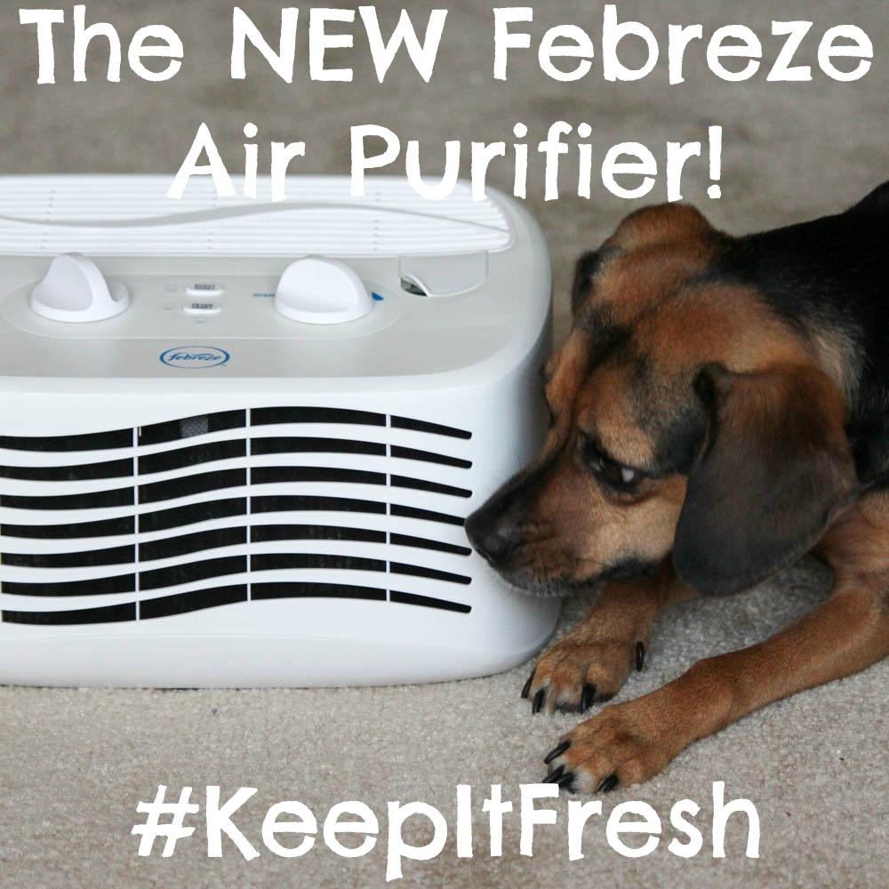 The NEW Febreze Air Purifier! #KeepItFresh