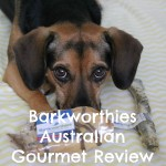 Natural Australian Gourmet Chews from Barkworthies