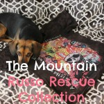 Building My Dog T-shirt Collection While Helping Shelter Pets #MountainArtwear