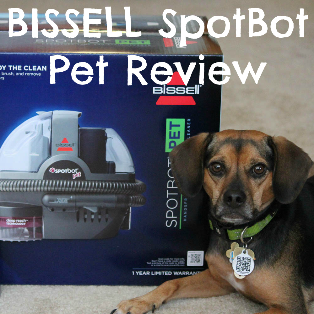 bissell spotbot reviewsbissell spot bot bissell With how to clean up dog diarrhea on wood floor