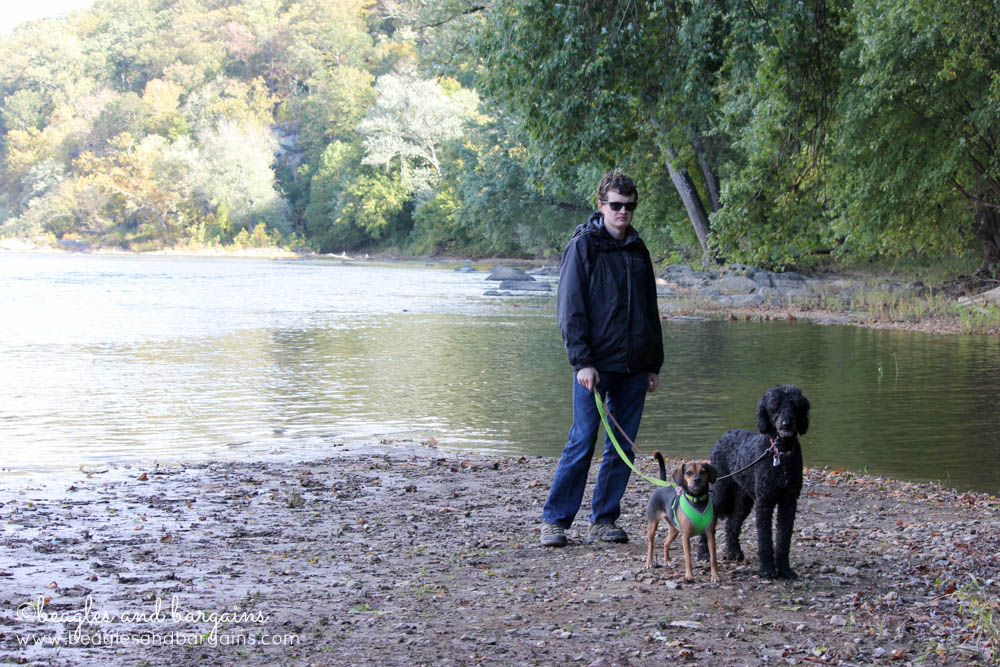 Struan, Luna, and Cousin Keto down by the Potomac River.