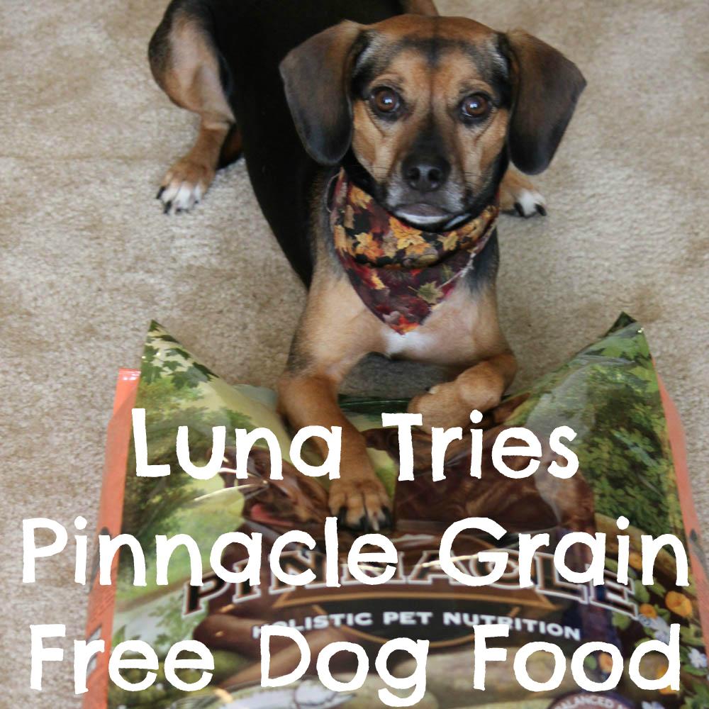 Luna Tries Pinnacle Grain Free Dog Food