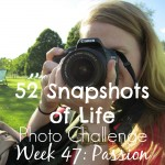 52 Snapshots of Life - Week 47 - Passion - A Picture of Passion