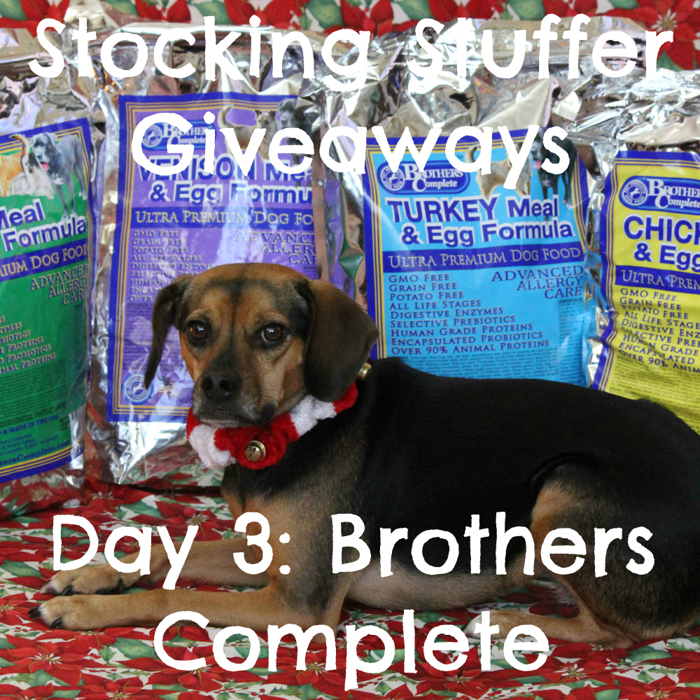 Beagles & Bargains Stocking Stuffer Giveaways 2015 - Day 3 - Brothers Complete
