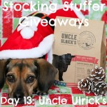 Stocking Stuffer Giveaway Day 13: Uncle Ulrick's Beef Jerky