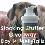 Stocking Stuffer Giveaway Day 14: WellyTails Supplements for Dogs