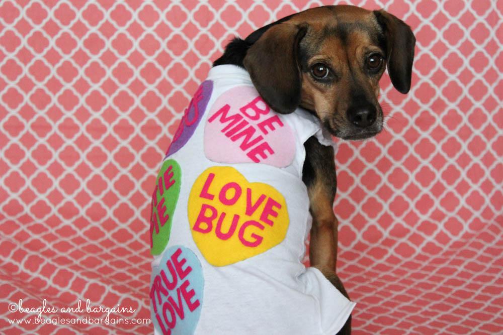 Luna models her Valentine Sweethearts Costume