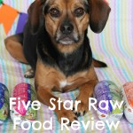 Celebrating Four Years of Blogging with Five Star Raw