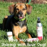 Save Money By Sharing with Your Dog!