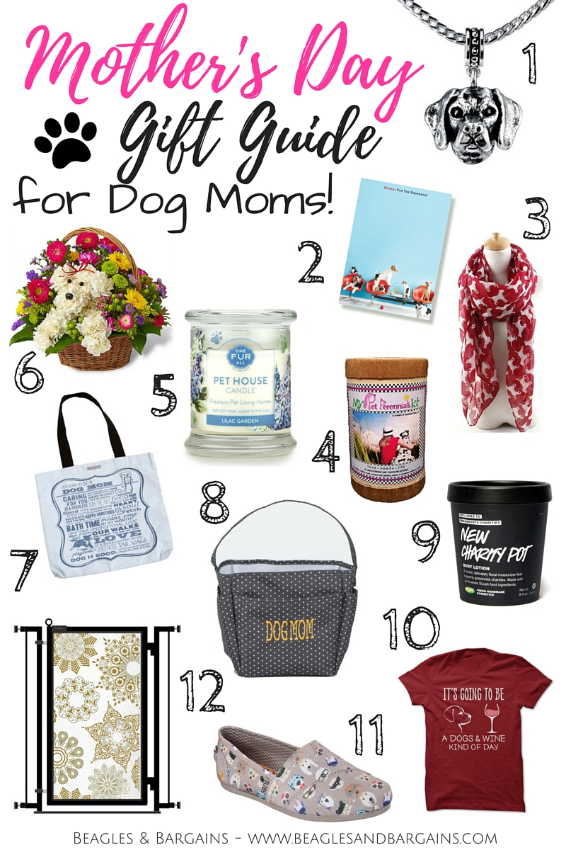 Good Presents To Get For Dogs