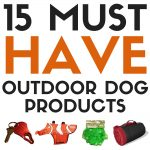 15 Must Have Outdoor Dog Products