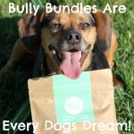 Bully Bundles Are Every Dogs Dream!