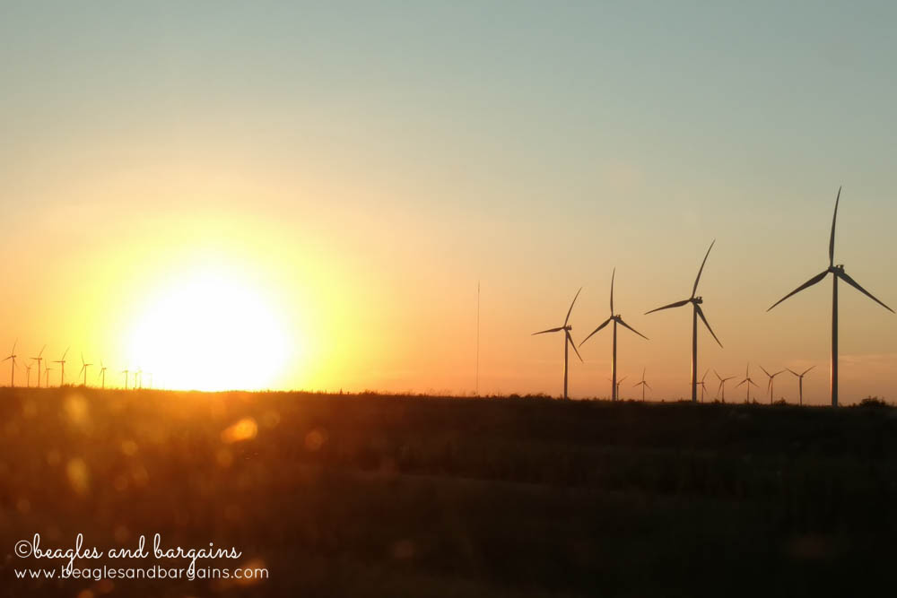 Wind turbines and beautiful Texas sky - RoadTrippinBeagle