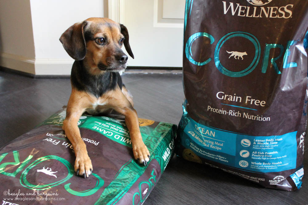 Luna wonders whether she'll prefer the Wellness CORE Wild Game or Ocean Formula