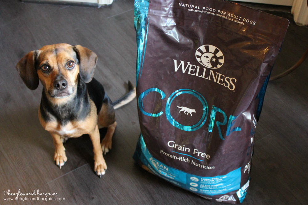 Luna is enjoying the Wellness CORE Ocean Formula!