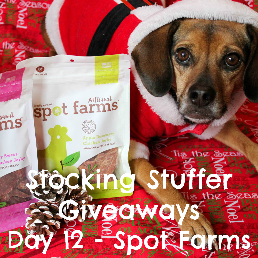 Beagles & Bargains Stocking Stuffer Giveaways 2016 - Day 12 - Spot Farms Artisanal Jerky