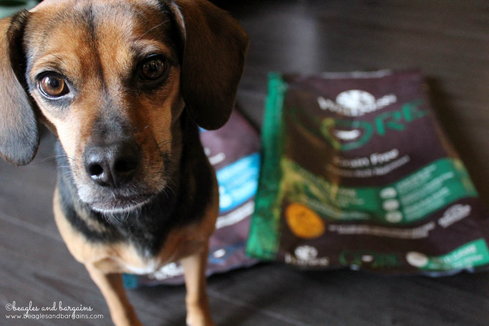Got empty dog food bags? Recycle them with Wellness and TerraCycle to earn rewards!