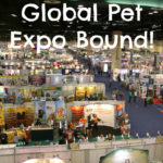 Global Pet Expo Bound! Follow #BeagleAtGPE and #GlobalPetExpo for the latest!