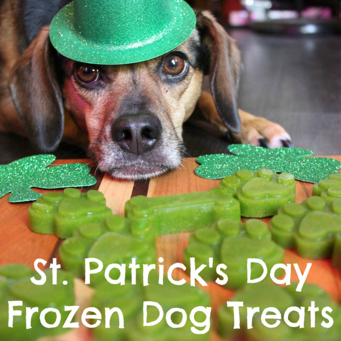 St. Patrick's Day Frozen Dog Treats - DIY Green Dog Treat Recipe