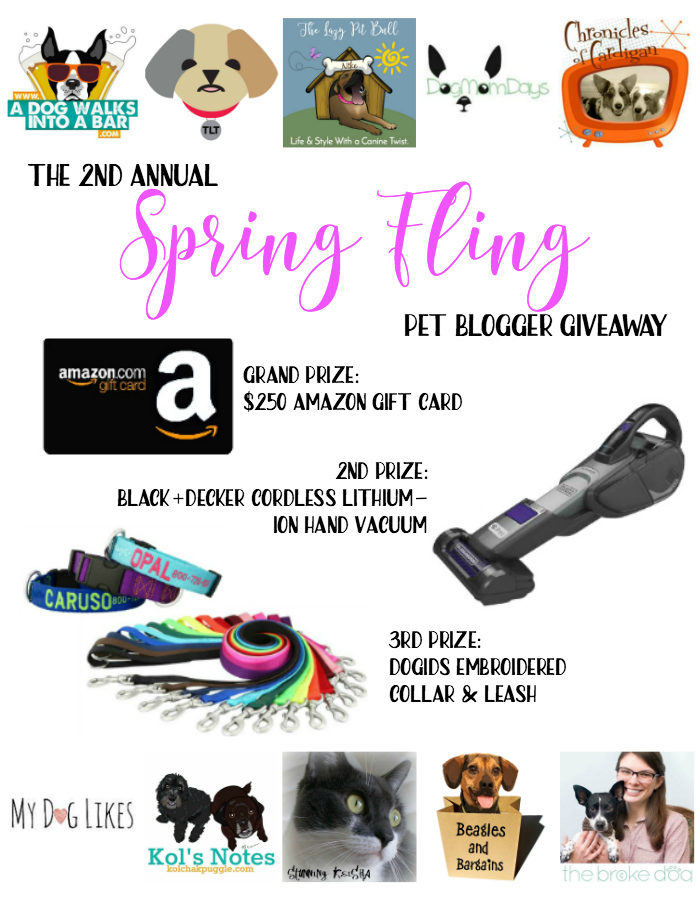 Spring Fling Pet Blogger Giveaway - Win a $250 Amazon Gift Card!
