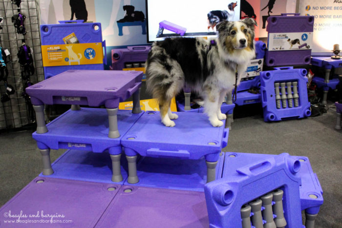 Top Pet Industry Trends for 2017 from the Global Pet Expo - Stimulation & Interactive Feeders - The Klimb