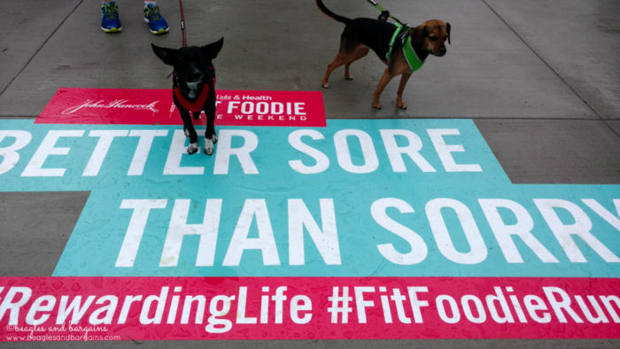 John Hancock Hosts The Cooking Light & Health Fit Foodie Festival & 5K - Fairfax, VA - June 3, 2017 - Ralph + Luna in 2016