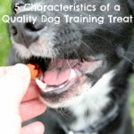 5 Identifiable Characteristics of a Quality Dog Training Treat