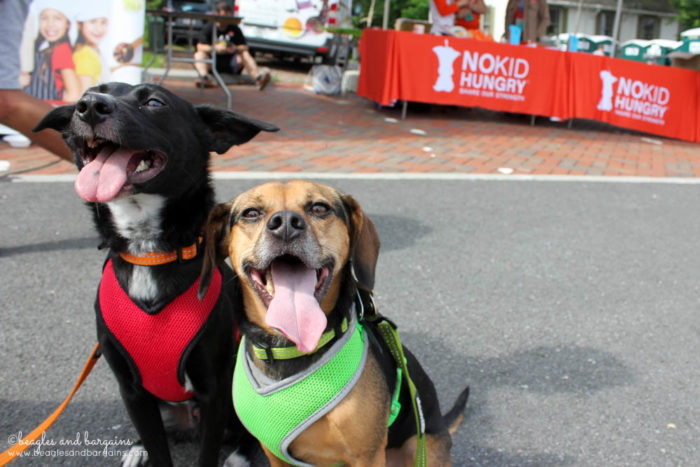 Ralph & Luna support No Kid Hungry at the Fit Foodie 5K & Festival