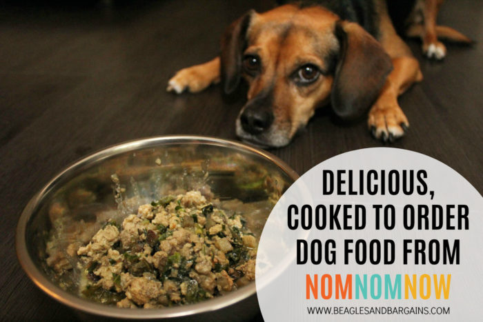 Delicious, Cooked to Order Dog Food from NomNomNow